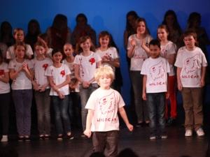 Hamburg Musical Company show 2010-7 Finale und Ap