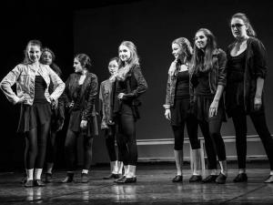 Sommer Show 2014 Allee-Theater Hamburg Gesangsszene aus Fame.jpg