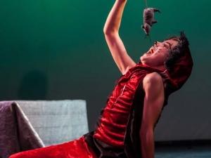 Sommer Show 2014 Allee-Theater Hamburg Junge spielt Schauspielszene aus König der Löwen.jpg