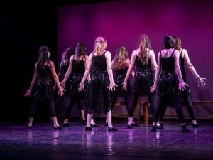 Sommer Show 2014 Allee-Theater Hamburg Tanz aus Fame.jpg