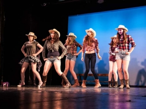 Sommer Show 2014 Allee-Theater Hamburg Tanz aus Footloose.jpg